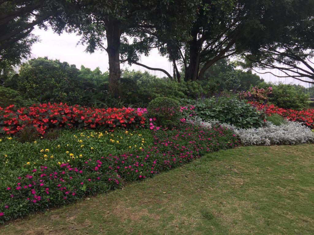 Nanning Attractions - Nanhu Garden